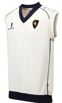 Picture of Haresfield Gladiators Short Sleeve Jumper