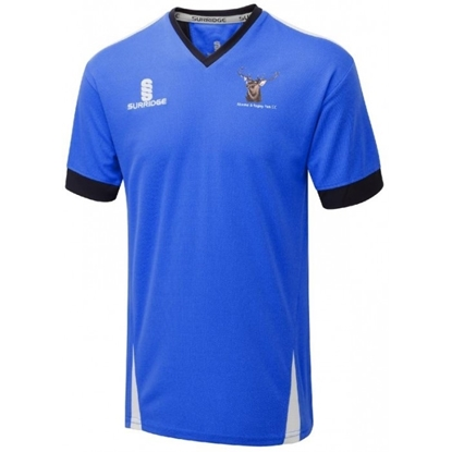 Picture of Alcester & Ragley CC Training Shirt