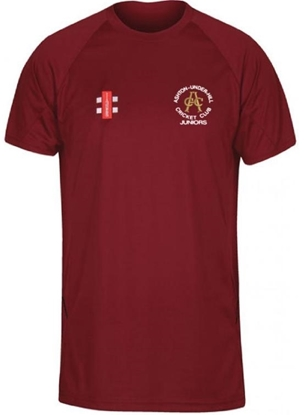 Picture of Ashton Under Hill CC Girls Match Shirt