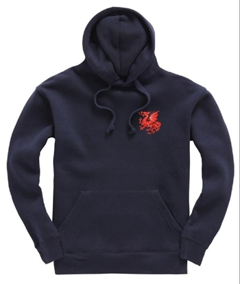Picture of Hazelwell House Hoodie
