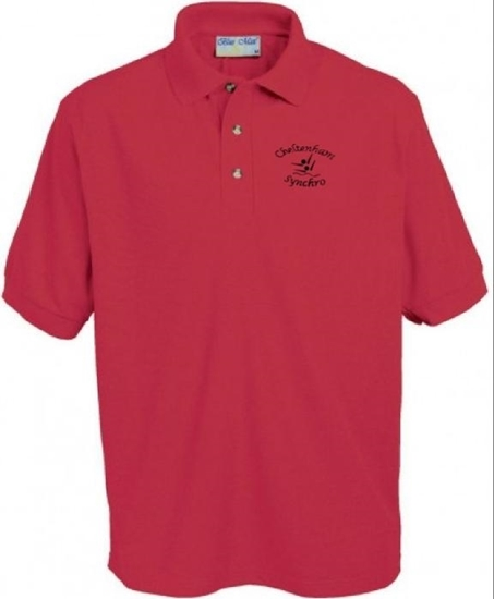 Picture of Chelt Synchro Polo